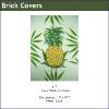 417 - Pineapple