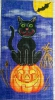 GEH128 - Pumpkin Patch/Cat