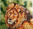 GEP208 - Lion