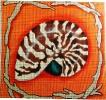 GEP210 - Nautilus